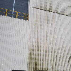 Algen verwijderen